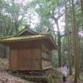 出る羽の山頂付近にあった神社。周り木々は立派で神々しい雰囲気。