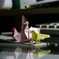 子供の時からの愛読書『折り紙生物スケッチ』 http://amzn.to/1xfTSSz から。 ニワトリ2ハト1。