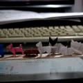 『折り紙生物スケッチ』から2,3日分。ペルシャねこ×2、シャムねこ、日本ねこ、ブルドック、日本犬、ダックスフント。